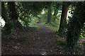 TQ1364 : Path across the golf course, Esher by Alan Hunt