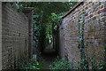 TQ1364 : Path between the walls, Esher by Alan Hunt
