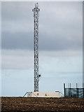 TA0114 : New Telecomm Mast near Worlaby by David Wright