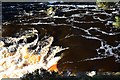 NY9027 : Patterns in the foam, Low Force by Jim Barton