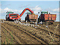 TA0114 : Potato Harvest near Worlaby by David Wright