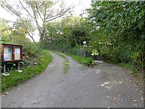 SW6719 : Junction of tracks in the Meres, Mullion by David Smith