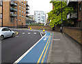 TQ3680 : Cycle Superhighway in Horseferry Road by David Hawgood