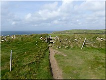 SW6715 : Stile for South West Coast Path above Pol Cornick by David Smith