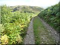 NY4319 : Public bridleway to Winter Crag by Christine Johnstone