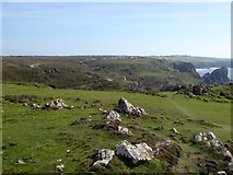 SW6813 : View over the valley of Kynance Cove by David Smith