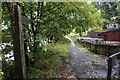 NZ0415 : Riverside footpath at Barnard Castle by Ian S