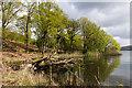 SD3892 : Lazy Bay by Ian Capper