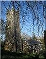 SX2281 : Church of St Nonna, Altarnun by Derek Harper