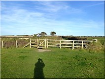 SW6619 : Footpath and track to Angrouse Farm, Mullion by David Smith