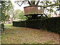 TQ1621 : A rather fine tree house by Marathon