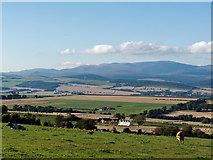 NH6561 : Productive farmland of Easter Ross by Julian Paren