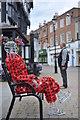 SO5140 : Poppy Man in Hereford by John Winder
