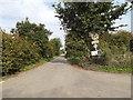 TM0615 : Ivy Lane, East Mersea by Geographer
