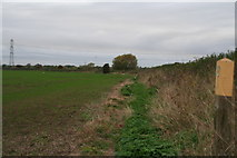 SK7353 : Footpath below the bank of the River Greet opposite Southwell Racecourse by Chris