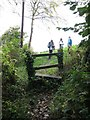 ST7768 : Stile and footpath at the edge of woodland by Dr Duncan Pepper