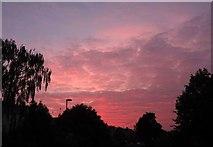 SX9065 : Sunset, Cricketfield Road, Torquay by Derek Harper