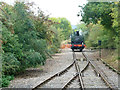 SP7903 : Limit of working, Chinnor & Princes Risborough Railway by Robin Webster