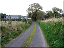 H5572 : Shinnagh Road, Mullaghslin Glebe by Kenneth  Allen