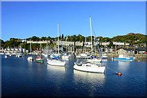 SH5638 : Porthmadog Harbour by John Firth