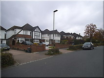 TQ3868 : Houses on Hayes Way, Park Langley by David Howard