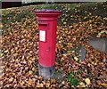 SO8403 : Queen Elizabeth II pillarbox amid dead leaves, Lightpill by Jaggery