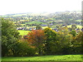 SJ2237 : Over woodland strip and fields to Llwynmawr by Maggie Cox