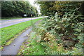 SP4601 : Culverted ditch beside the A420 at Bessels Leigh by Roger Templeman