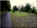 H2059 : Moynaghan Road, Moynaghan by Kenneth  Allen