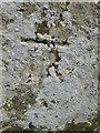 NY9578 : Ordnance Survey Cut Mark by Adrian Dust