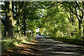NZ2427 : Minor road about to enter Old Eldon by Trevor Littlewood