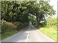 TM0119 : Haye Lane, Abberton by Adrian Cable