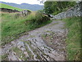 NY3205 : Chapel Stile – rocky path with Lingmoor Fell in the background by Peter S