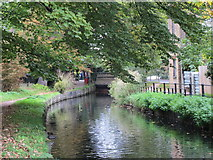 TQ3296 : The New River (old course) south of Church Street (A110), EN2 by Mike Quinn