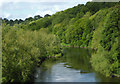SO7679 : The River Severn near Upper Arley, Worcestershire by Roger  Kidd