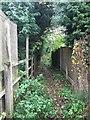 SJ7950 : Audley: public footpath by Jonathan Hutchins