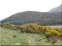J3530 : View across the Tullybranigan Valley to Drinnahilly by Eric Jones