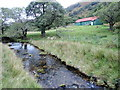 NY4316 : Rampsgill Beck by Mick Garratt