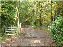 SU6466 : Bridleway to Burghfield Common by Robin Webster