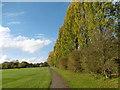 TQ2090 : Montrose Playing Fields by Marathon