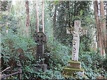 TQ2887 : Crosses in the Shrubbery by Bill Nicholls
