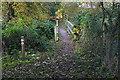 SU8771 : Footbridge over The Cut by Alan Hunt