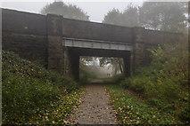 SK1460 : Tissington Trail by Peter McDermott