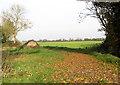 TM2690 : Leaves littering farm track by Evelyn Simak