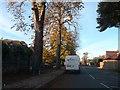TQ4267 : Southborough Road by David Howard