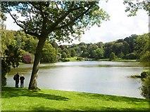 ST7733 : A lake vista, Stourhead by Derek Voller
