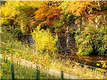 SJ8382 : Weir at Quarry Bank Mill by David Dixon