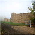 TL3255 : Field gate, bales and mist by John Sutton