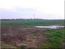 NZ2412 : Crop field near Howden Hill Farm by JThomas