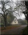TL2755 : Little Gransden: morning mist by John Sutton